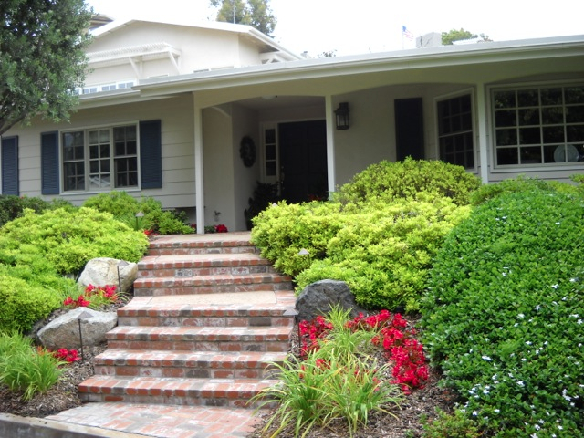 Front House Landscaping