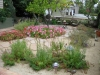 Garden and Pathway